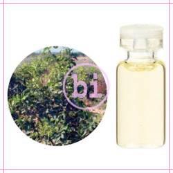 生活の木 エッセンシャルオイル 有機プチグレイン・ビターオレンジ(3ml)