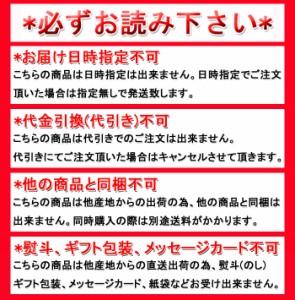 【送料無料】【同梱不可】絶品!たっぷりりんご!!アップルパイ5号 (SM00010089)