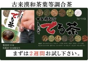 【送料無料】2袋セット 十五種類配合☆専門家監修 とにかくでる茶 28g メール便
