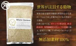 【送料無料】キヌア (キノア) 500g 本場ペルー/ボリビア産「21世紀の主要食」と認めた高栄養雑穀スーパーフード!ミネラル、ビタミン