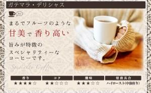 【澤井珈琲】 送料無料!コーヒー専門店の150杯分入り超大入ガテマラコーヒー福袋(コーヒー/コーヒー豆/珈琲豆)