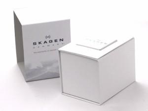 スカーゲン SKAGEN 腕時計 チタニウム メンズ 233XLTMB