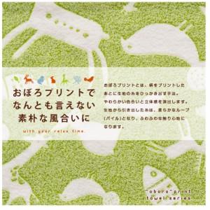 おぼろプリント 綿100% タオルケット ハーフサイズ 100×140cm 日本製 国産 オボロプリント吸水 ひんやり  エムール