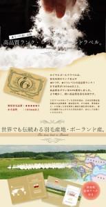 日本製 ロイヤルゴールドラベル 羽毛布団 ダブル ポーランド産ホワイトダックダウン93% 綿100% 【送料無料】  エムール