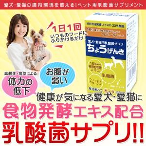 【お試し送料無料】ちょうげんき 20g 【犬・猫用乳酸菌サプリメント】 [ポイント10%還元]