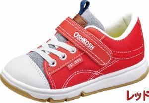 (A倉庫)OSH KOSH オシュコシュ OSK C419 子供靴 スニーカー 男の子 女の子 キッズ シューズ 靴  【2017年モデル】