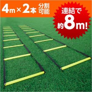 イグニオ(IGNIO) 【特選品】トレーニング ラダー約4m×2本(連結で8m)(収納バッグ付)(IG-8FE0294) (ラダートレーニング)