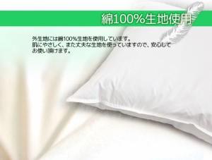 ふんわり フェザークッション(座布団)(45×45cm)小座布団