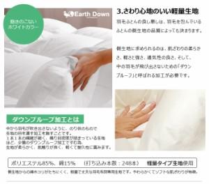 【日本製】 アースダウン 無地 ナチュラル 羽毛掛け布団 クイーンサイズ ニューゴールドラベル(TCNDQ)