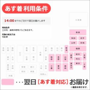 フォアアスリート235J 日本語正規版 心拍計内蔵GPSウォッチ [カラー:ブラックレッド] #37176H 送料無料 10%OFF 【あす着】
