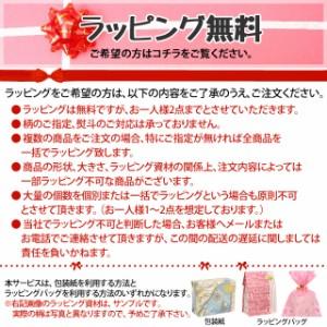 サクライ エコクリーン 18-8 泡立 14インチ SAKURAI 送料無料 キッチン用品