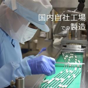 日本山人参 茶 60g×3袋 M-002-3 送料無料