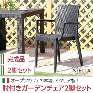 ガーデン肘付チェア 2脚セット ステラ-STELLA- (ガーデン カフェ)