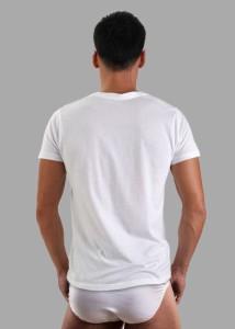 ... 深VネックTシャツ エジプト綿ギザ GIZA イージーモンキー限定 日本製 コットン100 ...