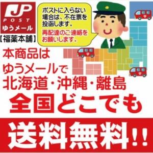 【第(2)類医薬品】ドルマインH軟膏 (12g)[ゆうパケット・送料無料]