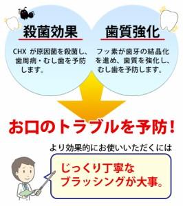 バトラー CHXペースト 75g【歯科専売品】 歯磨き粉/ハミガキ粉