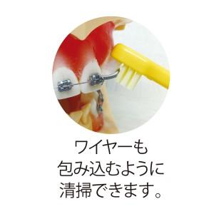 Neotuft (ネオタフト) /1本入り (ブリスターパック入り・ふつう)