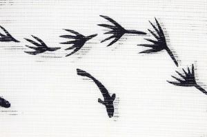 【呉服屋】【竺仙謹製 女物 浴衣 反物】白×黒(めだか) コーマ 地染め 注染 本染め 小幅 両耳 生地 上品 女浴衣