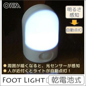 オーム電機 赤外線センサーライト 人が近づくと自動点灯!! 省エネ 07-1040