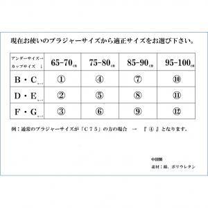 ノンストレスブラプラス モカ 10 送料込!