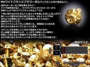 M6×10mm ステンレス ワイドフランジフラワーボルト 六角ボルト ゴールド TB0960