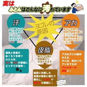 〔日本製〕ダクロン(R)クォロフィル(R)アクア中綿使用 洗える合い掛け布団 シングルサイズ 綿100%