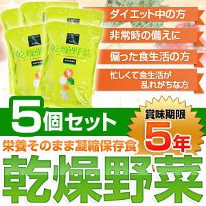 栄養そのまま凝縮保存食「乾燥野菜」(1袋:10g×10袋)〔5個セット〕