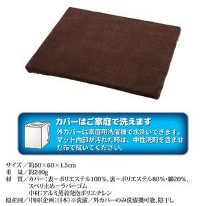 ぽかぽかペットマット 〔Lサイズ/50cm×60cm〕 外カバーのみ洗濯可 (ペット用防寒用具)