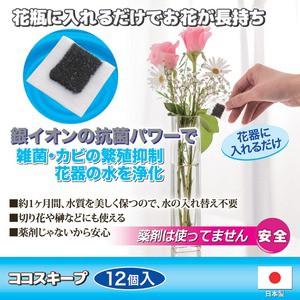 生け花イキイキ ココスキープ 〔12個入〕 使用有効期限/約1ヶ月間 抗菌作用