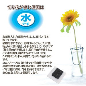 切り花延命剤/ココスキープ 〔12個入〕 使用有効期限/約1ヶ月間 抗菌作用