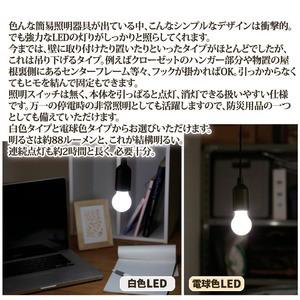ひっぱり点灯ライト 〔電球色LEDライト〕 吊り下げタイプ 単4乾電池式