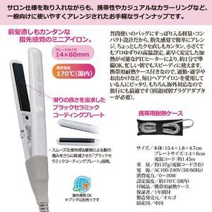 ストレートヘアアイロン(コテ) 海外対応 軽量/コンパクト 耐熱ケース付き