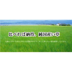 純国産 袋織い草カーペット 『ハナガラ』 ブルー 約191×191cm