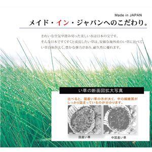 純国産 い草ラグカーペット オリエンタル柄 『DXオーディーン』 ブラウン 約191×191cm