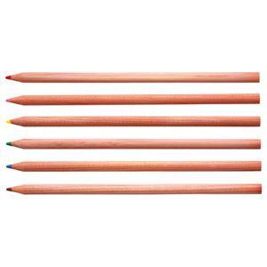 (まとめ) TANOSEE 色鉛筆 12色(各色1本) 1セット 〔×10セット〕