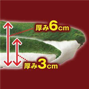 厚みが選べる 蓄熱わた入りボアラグマット/絨毯 単品 〔厚さ6cm 2畳サイズ 180cm×180cm〕 正方形 花柄 敷物