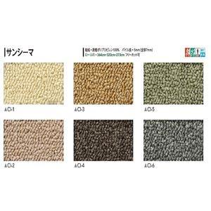 サンゲツカーペット サンシーマ 色番CI-5 サイズ 50cm×180cm 〔防ダニ〕 〔日本製〕