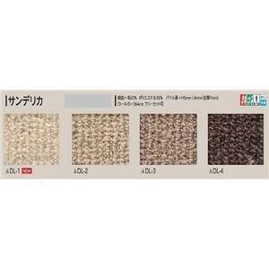 サンゲツカーペット サンデリカ 色番DL-3 サイズ 220cm 円形 【防ダニ】 【日本製】