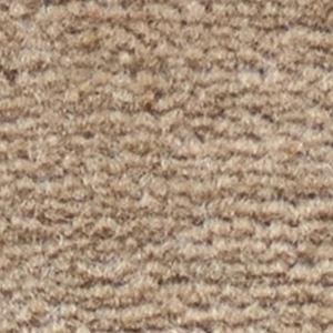 サンゲツカーペット サンフルーティ 色番FH-3 サイズ 80cm×200cm 【防ダニ】 【日本製】