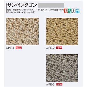 サンゲツカーペット サンペンタゴン 色番PE-2 サイズ200cm×200cm 〔防ダニ〕 〔日本製〕