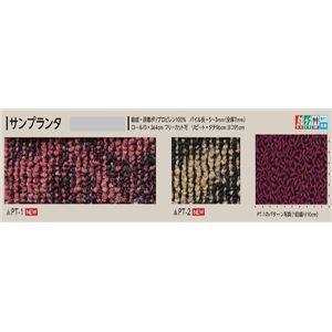 サンゲツカーペット サンプランタ 色番PT-2 サイズ 220cm 円形 【防ダニ】 【日本製】