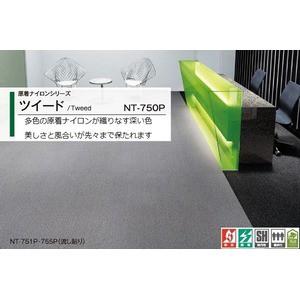 防汚性・耐候性・耐薬品性に優れたタイルカーペット サンゲツ NT-750P ツィード サイズ:50cm×50cm 20枚セット 色番:NT-751P【防炎】【