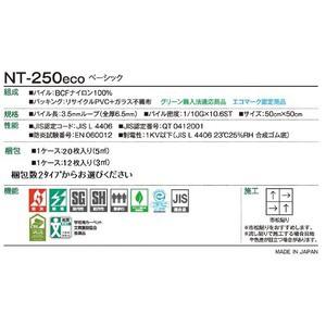 環境提案タイルカーペットサンゲツ NT-250eco ベーシック サイズ:50cm×50cm 20枚セット 色番:NT-2564【防炎】【日本製】