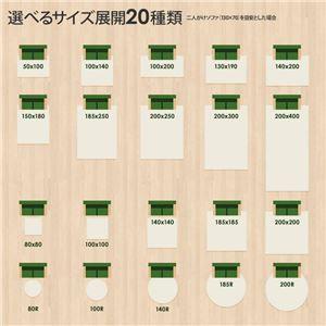 ラグマット 洗える 2畳 正方形(200×200cm) モスグリーン 【やさしいマイクロファイバーシャギーラグ】 〔北欧風 丸洗い カーペット〕