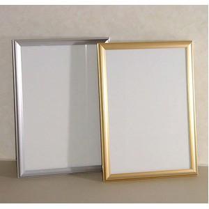デッサン額縁/フレーム 〔半切サイズ 545×424mm〕 ゴールド 壁掛けひも付き 化粧箱入り 5003