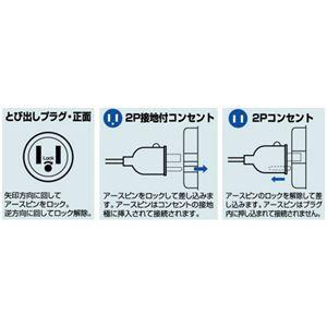 ハタヤリミテッド P2-3SE 取替用スケルトンとび出しプラグ
