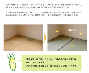 純国産/日本製 糸引織 い草上敷 『湯沢』 三六間2畳(約182×182cm)