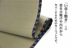 純国産 い草 上敷き カーペット 糸引織 『立山』 六一間8畳(約370×370cm) 熊本県八代産イ草使用