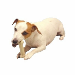 口腔内を健康に保ちストレス解消に 犬用 スポーン マローボーン ジャンボ 【犬/おもちゃ/デンタルケア】