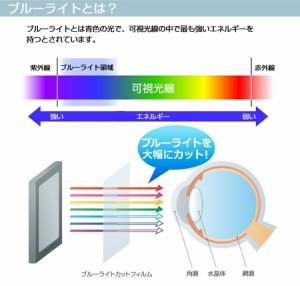 メール便送料無料/Geanee ADP-737[7インチ]機種で使える ブルーライトカット 液晶保護フィルム と タブレットケース